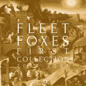 Fleet Foxes' Journey through First Collection