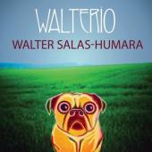 Walter Salas-Humara's Ongoing Adventure