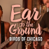 Ear To The Ground: Birds of Chicago
