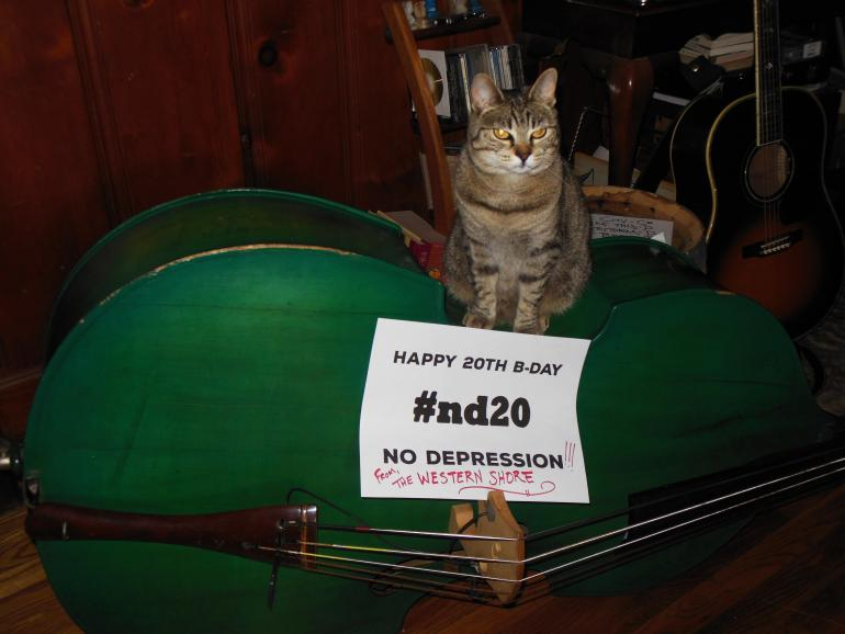 Happy 20th from The Western Shore ('s Cat)